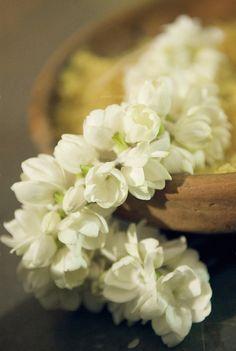 mogra flower supplier ashraf enkalna